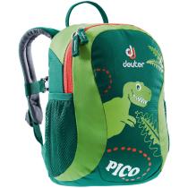 Kauf Pico Grün Alpin/Kiwi