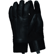 Buy Roldal Dri Insulated Leather Gloves Caviar
