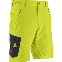 Compra Wayfarer Short M Lime Punch