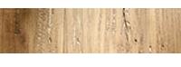 trustpilot picto